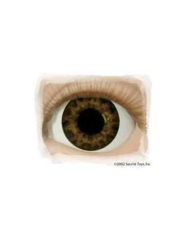 Ojos Acrilico tamaño 12 mm color TIGER EYE BROWN