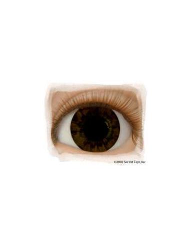 Ojos Acrilico tamaño 14 mm color CHOCOLATE BROWN
